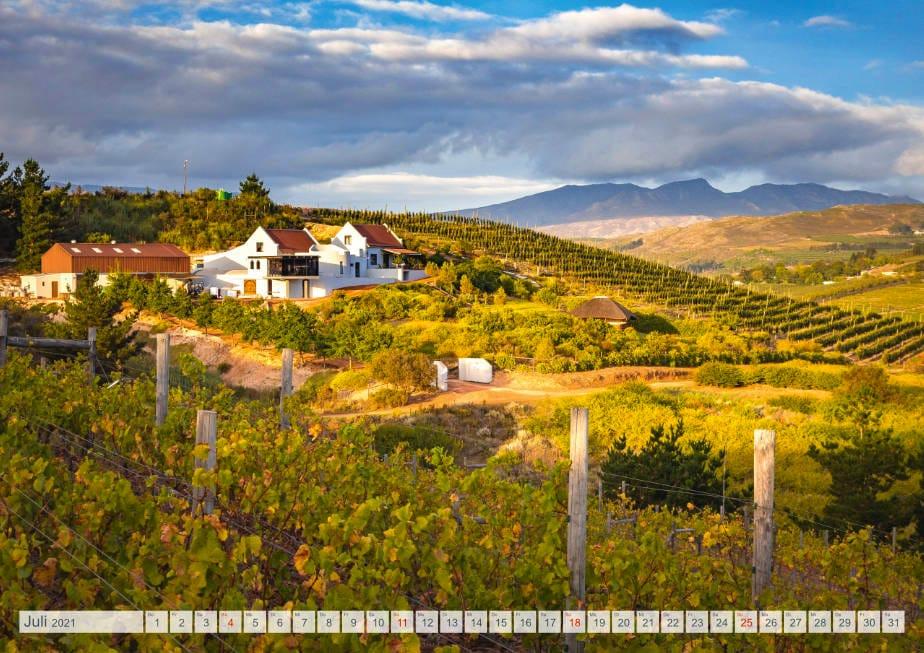 Kalender Weingüter Südafrikas - Spioenkop